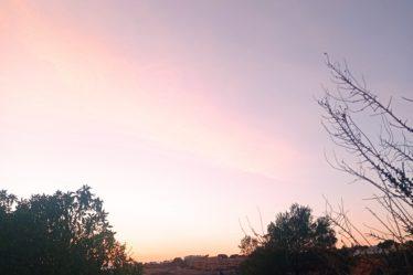 Quelques colocs au coucher de soleil, après une dépollution.